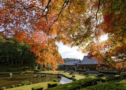 紅葉の雪舟庭園